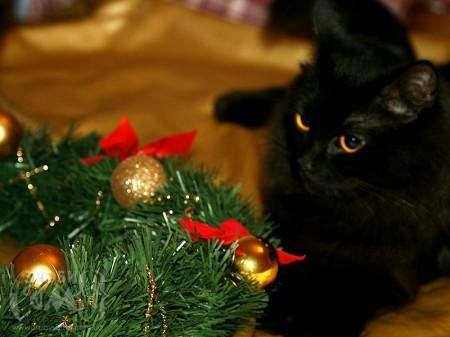 Як зробити новорічний віночок із мішури, дроту та ялинкових прикрас