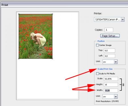 Друк фото із білими полями із Фотошопа