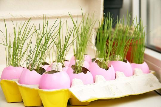 Фарбування шкаралуп від яєць до Великодня