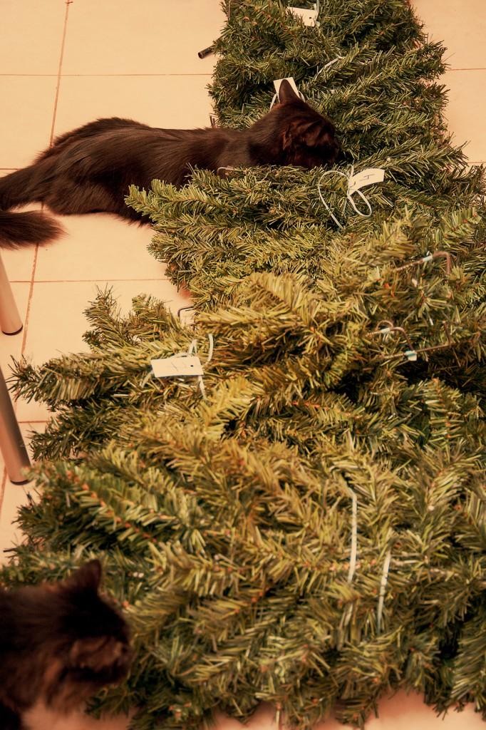 Наша новорічна ялинка 2013 – невеличка екскурсія