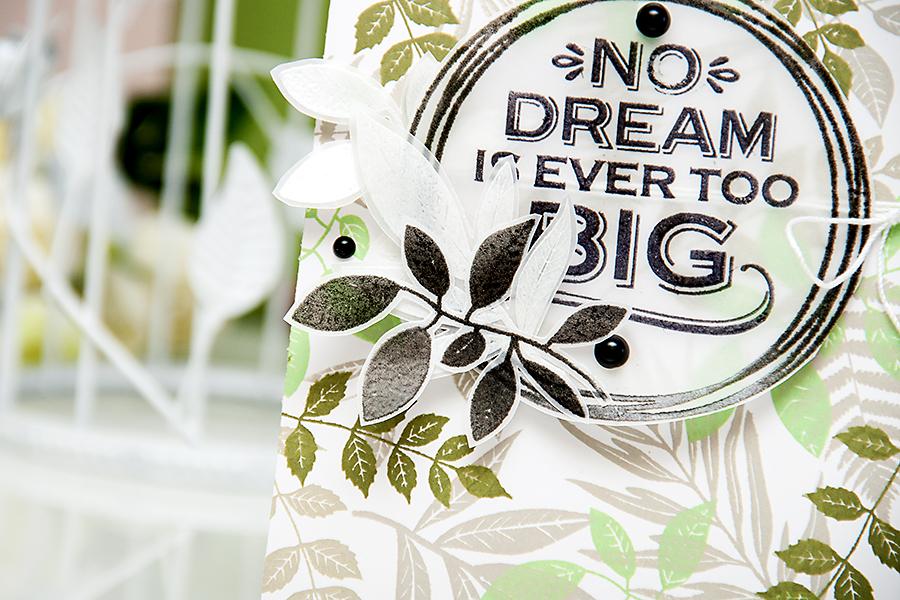 Yana Smakula | Hero Arts - No Dream Is Ever Too Big