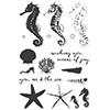 Hero Arts Color Layering Seahorse Stamp Set CL956