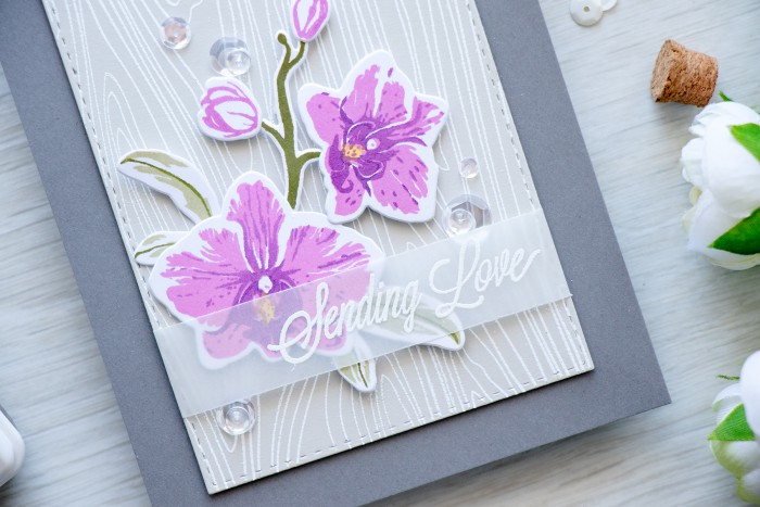 Hero Arts | Purple Orchids - Sending Love