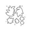 Wplus9 Autumn Leaves Designer Dies