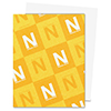 Neenah 80 Solar White Paper Pack 250 Sheets