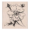 Hero Arts Rubber Stamp Antique Rose Stem