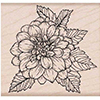 Hero Arts Rubber Stamps Artistic Dahlia