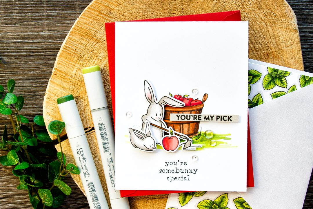 Hero Arts | My Monthly Hero March 2017 Kit - You're My Pick Bunny Card by Yana Smakula