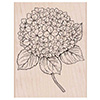 Hero Arts Rubber Stamps Large Hydrangea