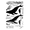 Hero Arts Clear Stamps Color Layering Blue Whale