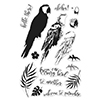 Hero Arts Clear Stamps Color Layering Parrot