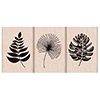 Hero Arts Rubber Stamp Tropical Leaves