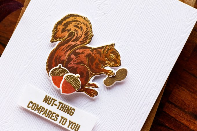 Hero Arts | Nutting Compares To You - Color Layering Squirrel Card by Yana Smakula. September My Monthly Hero Blog Hop