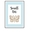 Spellbinders Small Die Of The Month Membership