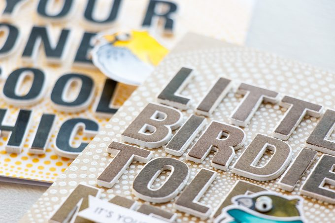 Hero Arts | Lots of Bird Cards! Video. February My Monthly Hero Blog Hop + Giveaway #mymonthlyhero #cardmaking #stamping #heroarts