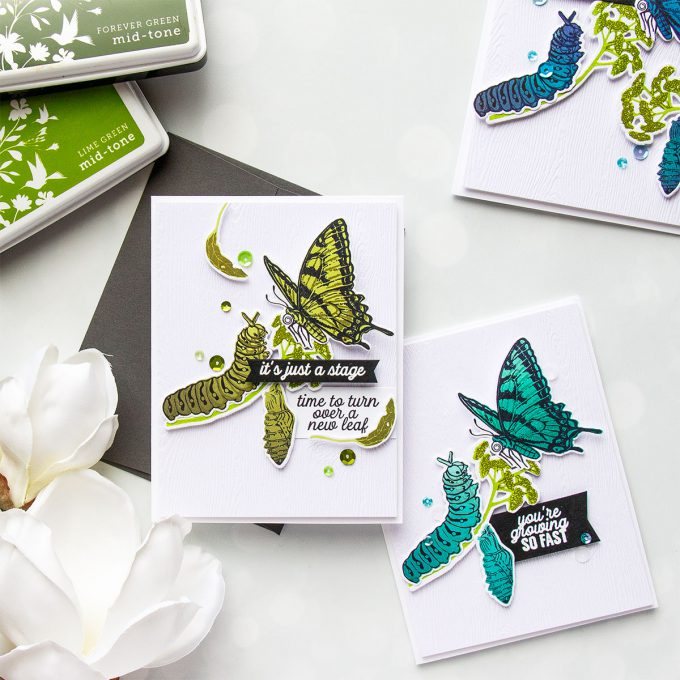 Hero Arts | Color Layering With Yana Series – Color Layering Caterpillar & Butterflies Cards by Yana Smakula. Video Tutorial. #heroarts #cardmaking #stamping #colorlayering