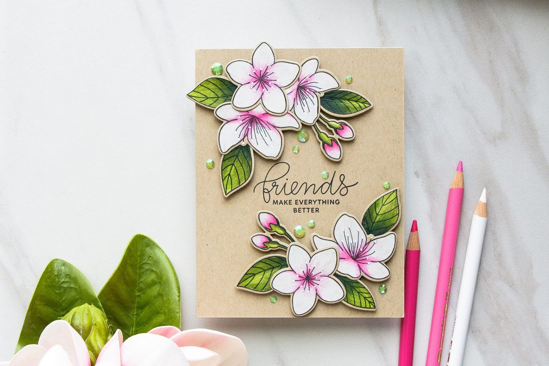 Pretty Pink Posh | Cherry Blossoms Friendship Card. Photo Tutorial by Yana Smakula #prettypinkpost #stamping #polychromos #coloring #adultcoloring #friendshipcard