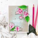 Pretty Pink Posh   Pencil Colored Fuchsias by Yana Smakula. Video tutorial. #cardmaking #prettypinkposh #polychromos #stamping
