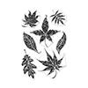 Hero Arts Textured Leaves