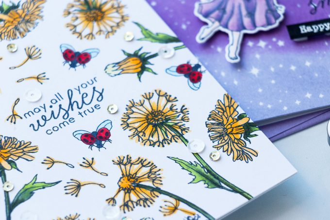 Hero Arts | December 2018 My Monthly Hero Kit. Video (Blog Hop + Giveaway). Handmade cards by Yana Smakula