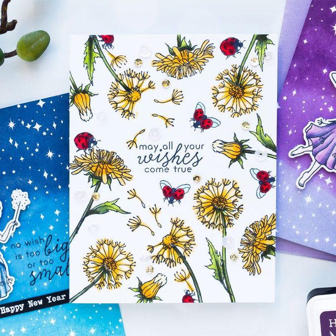 Hero Arts | December 2018 My Monthly Hero Kit. Video (Blog Hop + Giveaway). Handmade cards by Yana Smakula