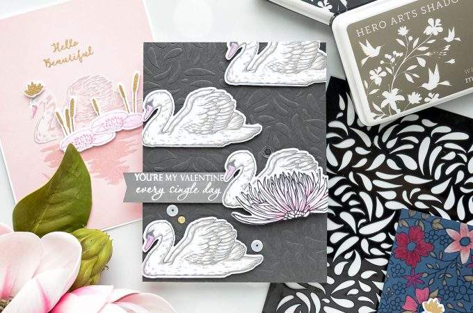 """Swan Greeting Cards featuring """"Color Layering Swan"""" stamp set from Hero Arts. Video tutorial by Yana Smakula"""