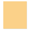 FSJ Pineapple Smoothie 8.5 x 11 Cardstock