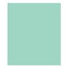 FSJ Cool Pool 8.5x11 Cardstock