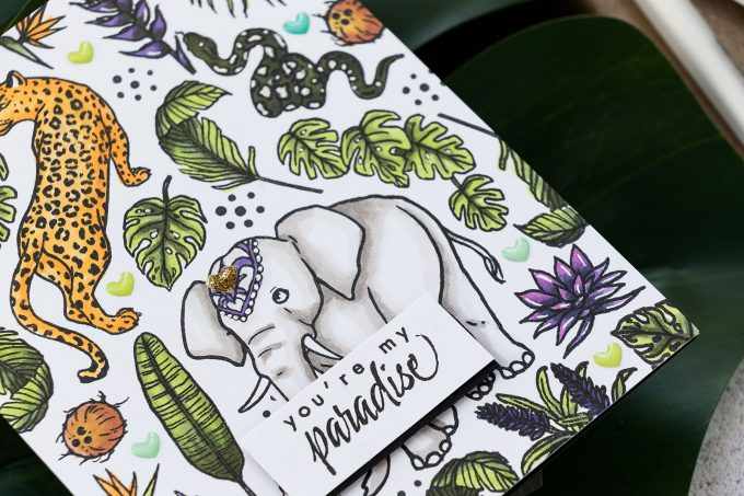 Jungle Cards with Hero Arts My Monthly Hero June 2019 Kit | Video