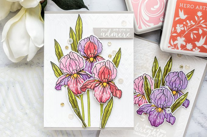Hero Arts | 3D Decoupage With Layering Iris. Color Layering with Yana Series. Video