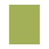 Hero Hues Premium Cardstock Kiwi