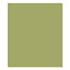 FSJ Lemongrass 8.5 x 11 Cardstock