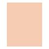 FSJ Peaches and Cream 8.5x11 Cardstock