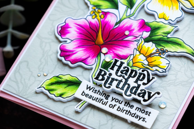 Simon Says Stamp | Happy Birthday Hibiscus Card by Yana Smakula featuring HIBISCUS BLOOMS sss202338c #simonsaysstamp #sssmakemagic